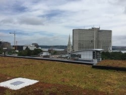 Halifax library rooftop green space
