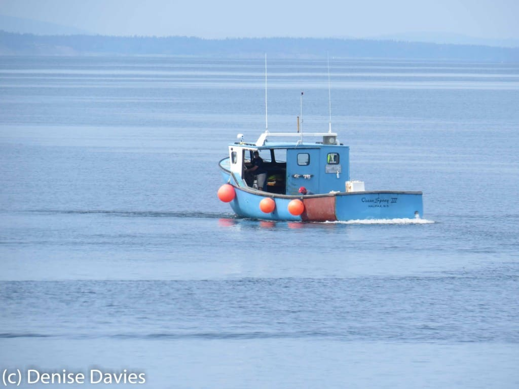 Arisaig boat on calm ocean