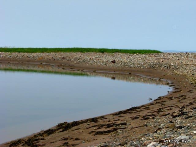 Mahoneys Beach 2689