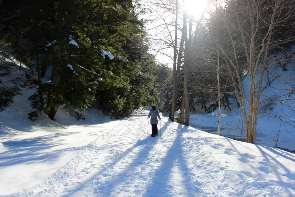 - Allison Sears snowshoes along one of the trails at Victoria Park that leads along the Lepper Brook to the Joseph Howe Falls.